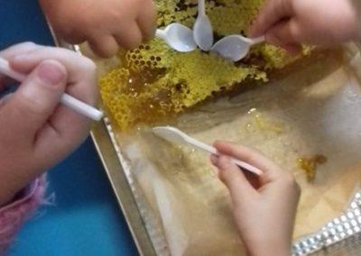 pszczoły001